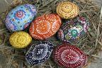 Kolorowe jaja na niedzielnej wystawie i aukcji